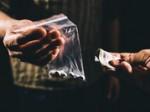 Drugscriminaliteit in zuid Nederland