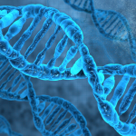 'Cybersecurity zit in ons DNA'